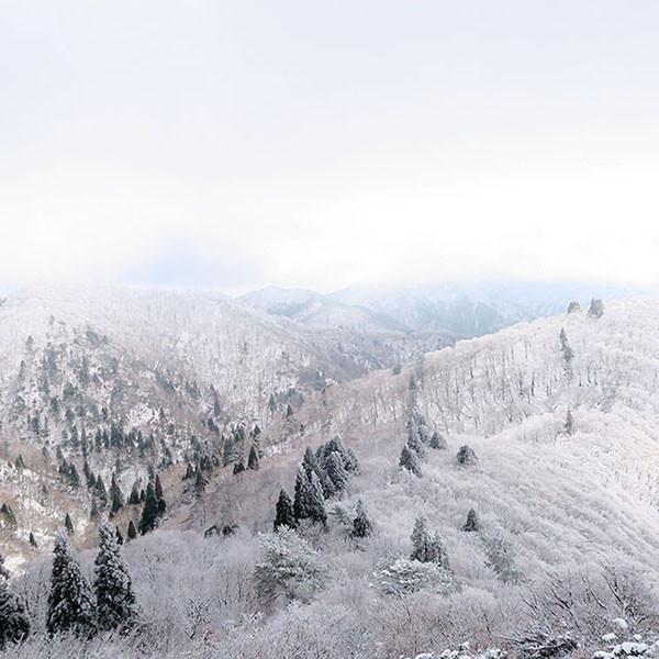 雪山登山 / 武奈ヶ岳